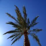 Hurghada 10 2010